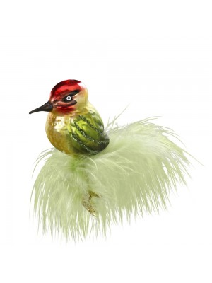 Fugl med grøn fjer.