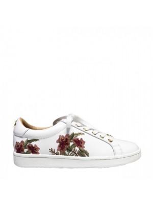 PHILIP HOG FLOWER WHITE