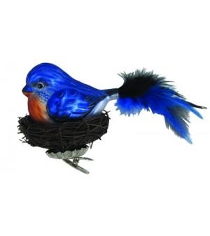 Blå fugl med rede.
